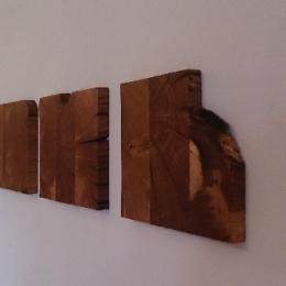 slike iz lesa