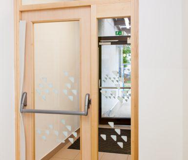 moderna steklena vrata v kombinaciji z lesom